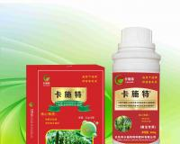 黄瓜专用叶面肥